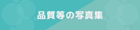 品質等の写真集/鎌倉市 腰越 のクリーニング店